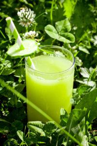 Зеленый лимонад из Изумрудного города (Л. Ф. Баум. «Удивительный волшебник из страны Оз»)